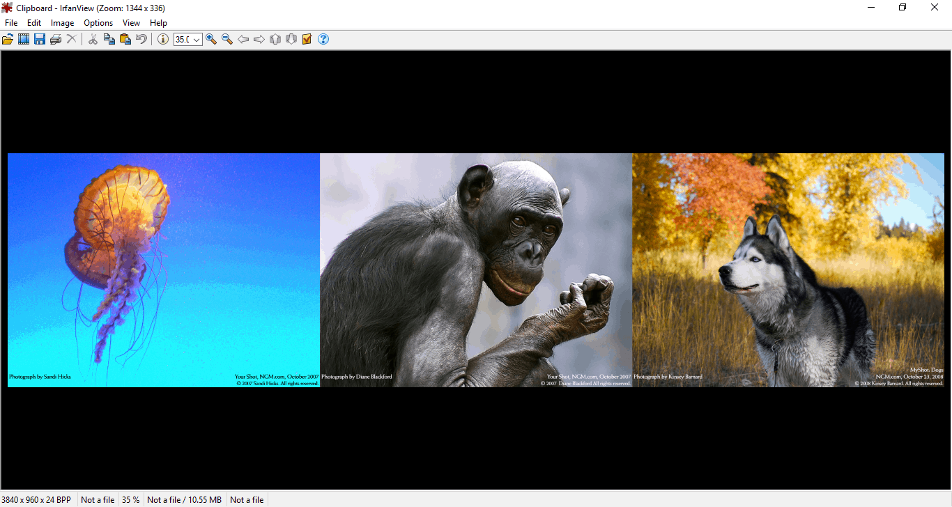 5 Best Photo viewers for Windows 10 - Win10 FAQ
